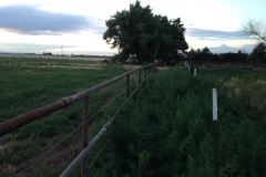 Pipe & Cable Fencing for Cattle & Horses
